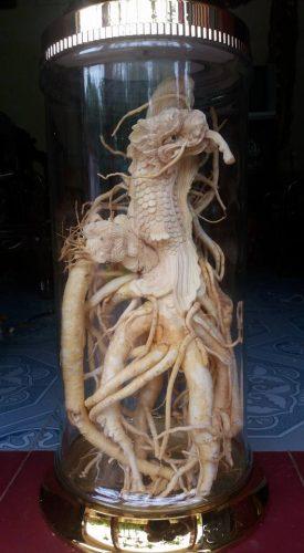 tác phẩm đinh lăng điêu khắc đã hoàn thiện