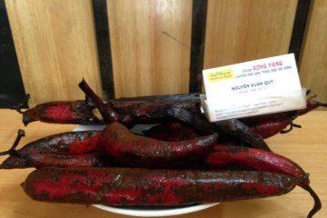 Cây bòi vịt thảo dược bổ dương mạnh chưa được biết đến bạn có dám thử