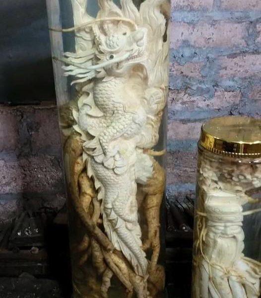 Rồng khủng khắc bằng đinh lăng