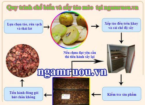 Quy trình sấy táo mèo khô