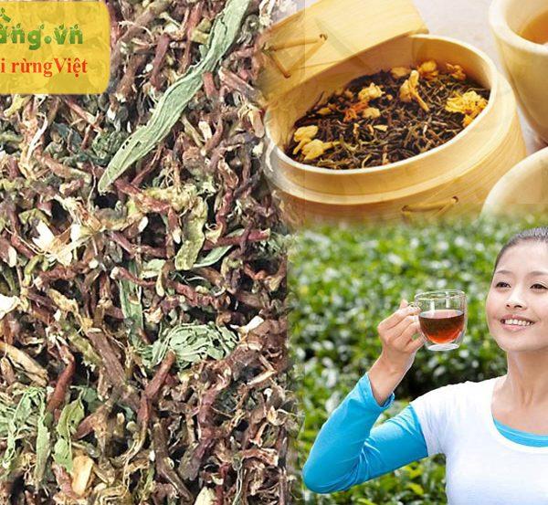 uống trà sơn mật hồng sâm đều đặn giúp cơ thể khỏe mạnh thư thái