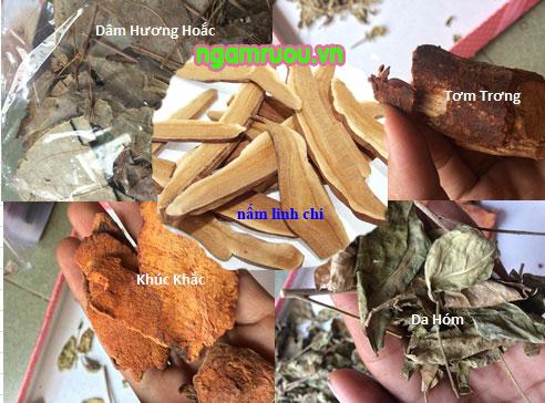 các thành phần chính trong thang Amakong