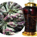 Tác dụng của rượu ngâm chuối hột – Những công dụng không ngờ