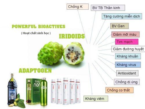 thành phần hóa học của trái nhàu