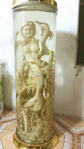 mẫu điêu khắc đinh lăng nàng tiên cá bình 40 lít