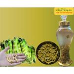 Shop Rừng Vàng thông báo giá bán mùa Sâu chít Điện Biên 2019 – 2020