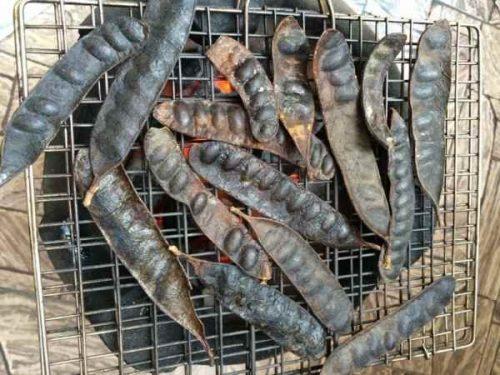 bồ kết nên được nướng trên bết than trước khi dùng
