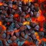 nướng hạt dổi rừng trên than củi