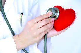 hoa hòe có công dụng tốt cho hệ tim mạch và tuần hoàn