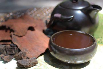 Nên uống trà thủ ô vào lúc nào trong ngày là tốt nhất
