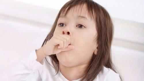 dùng sáp ong rừng trị ho cho trẻ em hiệu quả an toàn