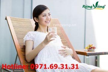 Bà bầu, phụ nữ mang thai có được uống trà nụ hoa tam thất không?