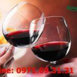 Rượu sim rừng có tác dụng gì? 7 công dụng thần thánh của rượu sim