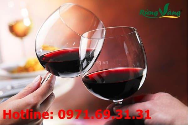 Rượu sim rừng có tác dụng gì