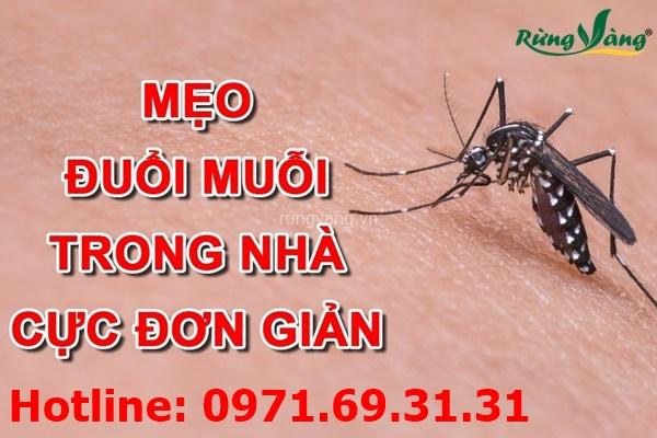 Phương pháp xua muỗi để phòng bệnh